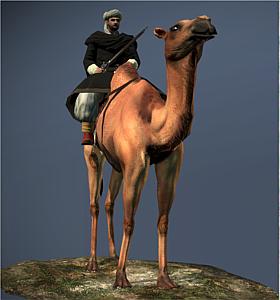 Camel Gunners NTW