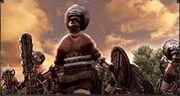 Tlaxcalan Priests of Quetzalcoatl2