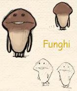 FunghiB