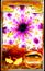 Card203yuyu.png