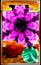 Card200yuyu.png