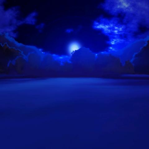 El bosque en la noche en <a href=