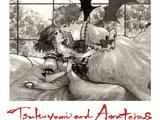 Tsukuyomi and Amateras