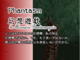 Concealed the Conclusion: Phantasm