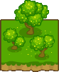 Wattle Trees Tile Icon