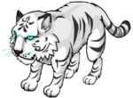 White Tiger Pet