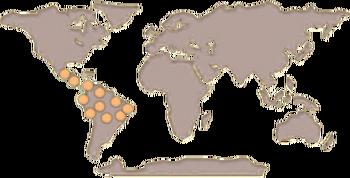 Tapir Map