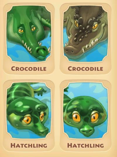 Crocodile Page