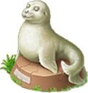 Fur Seal Statue