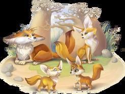 Fennec Fox Family