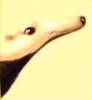 Anteater F