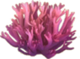 Birdsnest Coral Icon