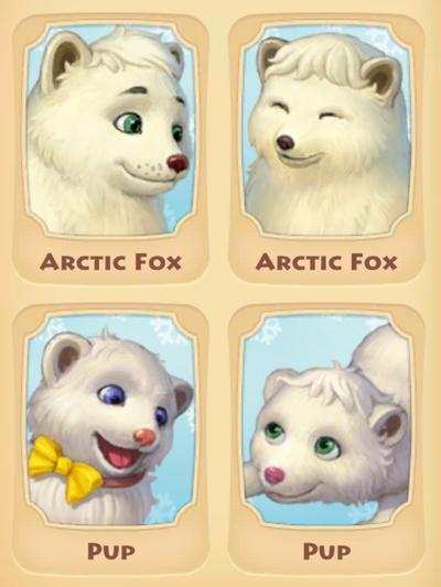 Arctic Fox Page