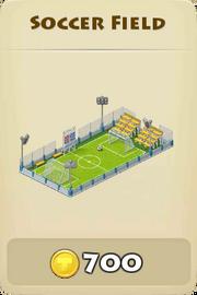 Soccerfield winter