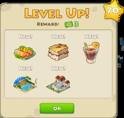 Level 70 1