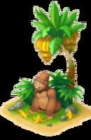 Banana Break
