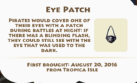 Eye Patch Artifact
