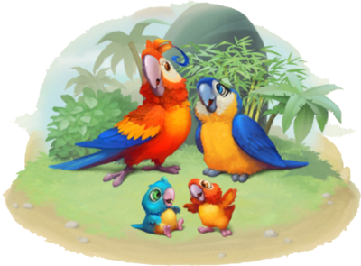 Macaw Family