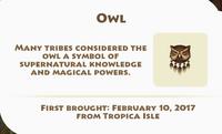 Owl Artifact