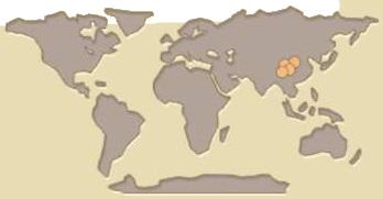 Panda map