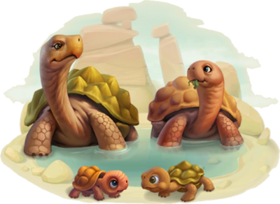 Giant Tortoise Family