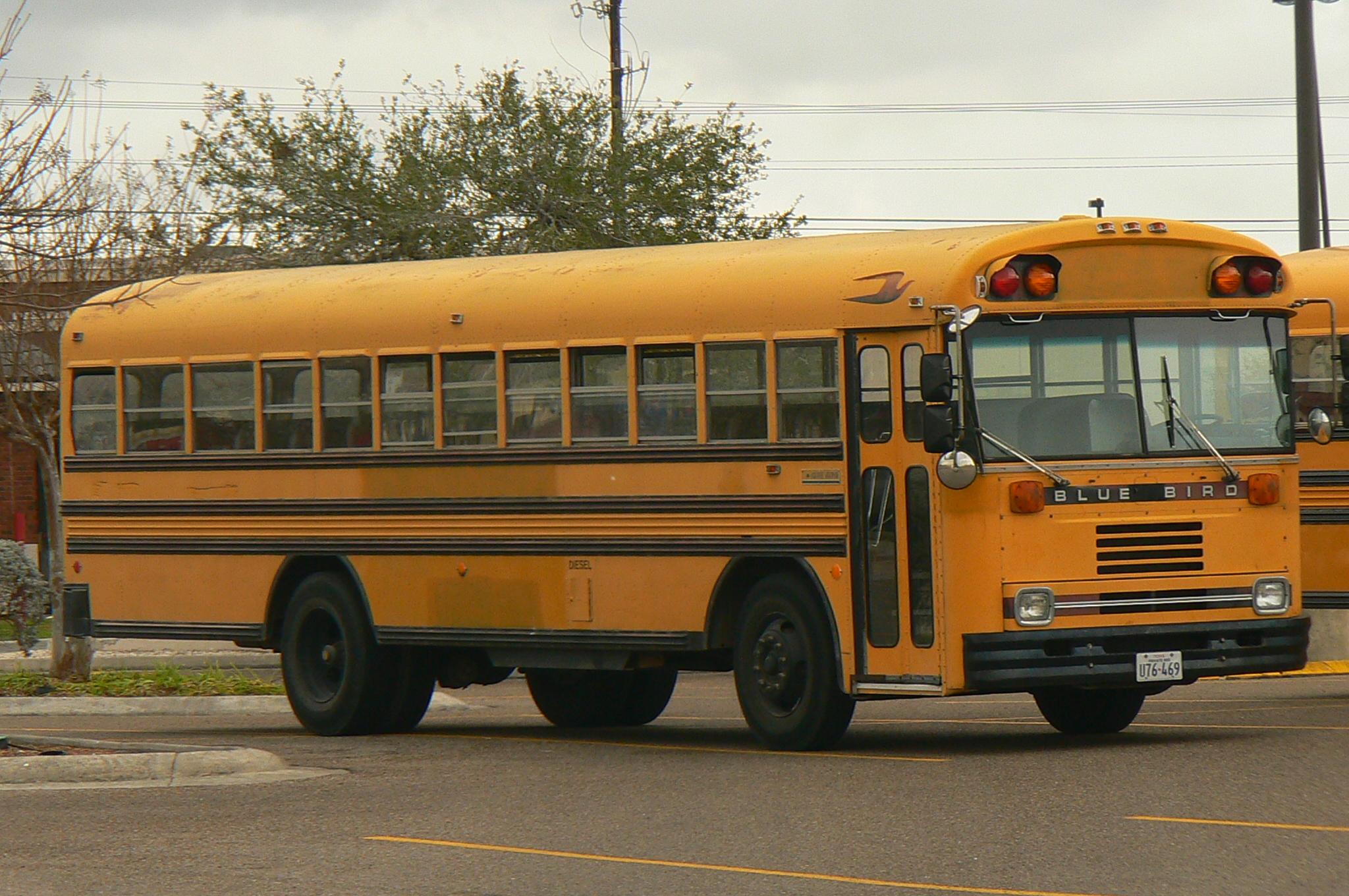 Wiring Harness 1987 Chevy Bluebird School Bus Trusted Wiring Diagram \u2022 Bluebird  Bus Exhaust System Bluebird Bus Wiring Diagram 1987 Chevy