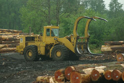 Cat 988 adapted for handling logs