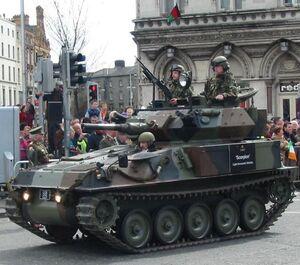 Irish Scorpion Tank