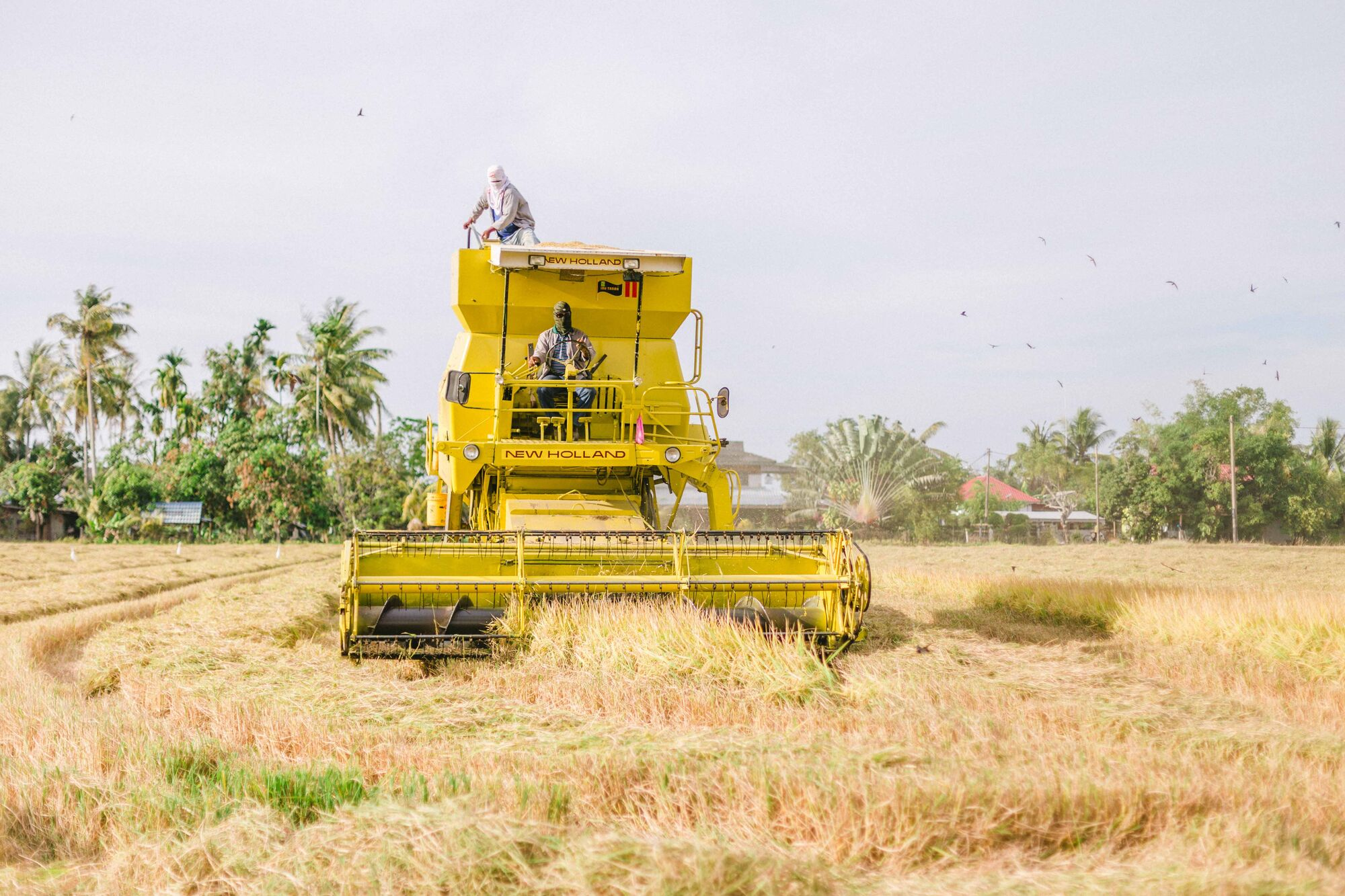 List of New Holland Harvesting Machinery | Tractor & Construction