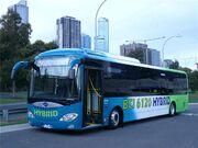 Bci buses