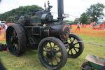 Fowler no. 16289 TE - Supremacy - NL 8292 at Masham 09 - IMG 0429