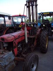 MF 65 with Forklift at Lanark Auction mart - DSC00419