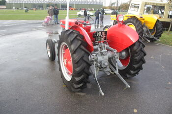 Massey Ferguson 130 - NUD 106F at Newark VS 08 - IMG 3429