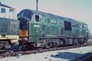 D6343, d7072 - old oak common - 1965