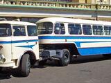 Trailer bus