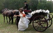WeddingCarriage