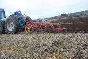 County Super-4 BNJ 49B ploughing at Bernard Saunders WD 08 -IMG 4165