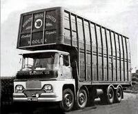 A 1960s GUY Warrior Diesel Cattle Lorry