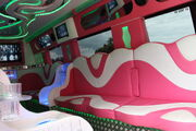 Mercedes-Benz based party bus at Powderham castle 11 - IMG 5970