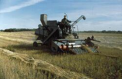 1965 Gleaner E harvester