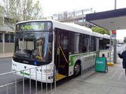Benders Buslines 127