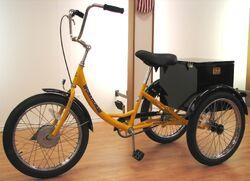 Workhorse Trike