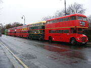 Row of seven preserved Routemasters