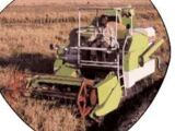 Escorts Claas Crop Tiger