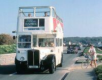 Bus Guernsey