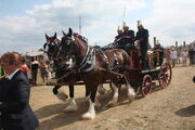 Shand-Mason steam fire engine - Thorney at Hollowell 2011 - Picture 798