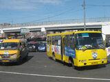 Bogdan (bus)