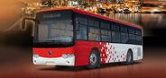 Bonluck JXK6960G bus