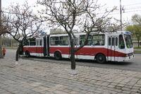Pyongyang bus