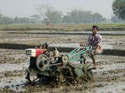 2WTpuddlingBangladesh